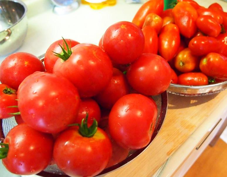 我が家で収穫されたトマト