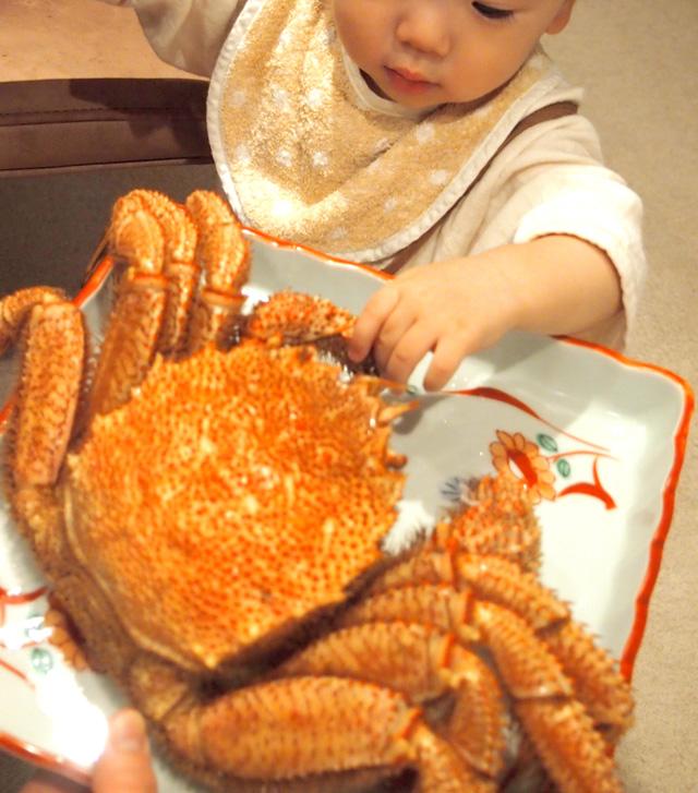 一歳と毛蟹