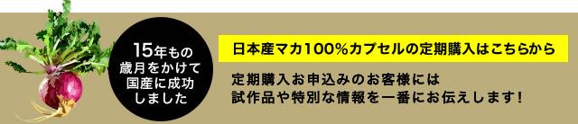 ブログ用マカ定期購入バナー